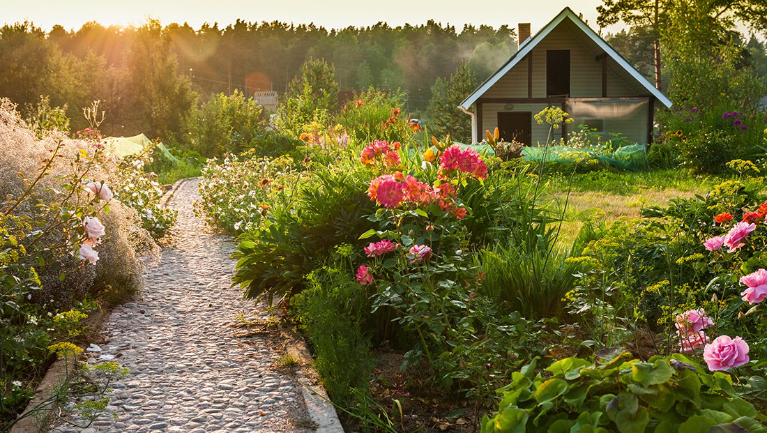 Landscaping and Gardening Without Breaking the Bank